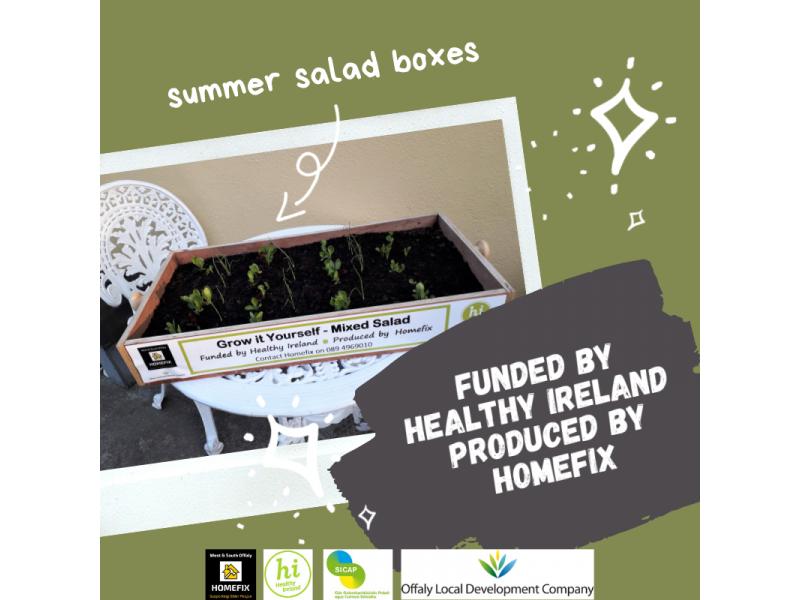 summer-salad-boxes